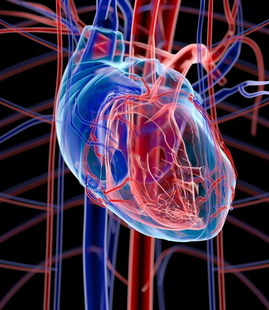 Νέες Οδηγίες της Ευρωπαϊκής Καρδιολογικής Εταιρείας συμπεριλαμβάνουν την αγωγή με βερισιγουάτη της Bayer